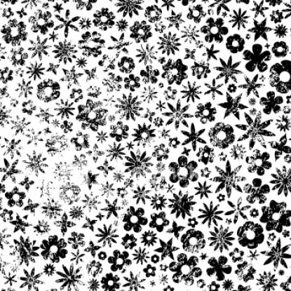 flowers background white. Black and white flowers