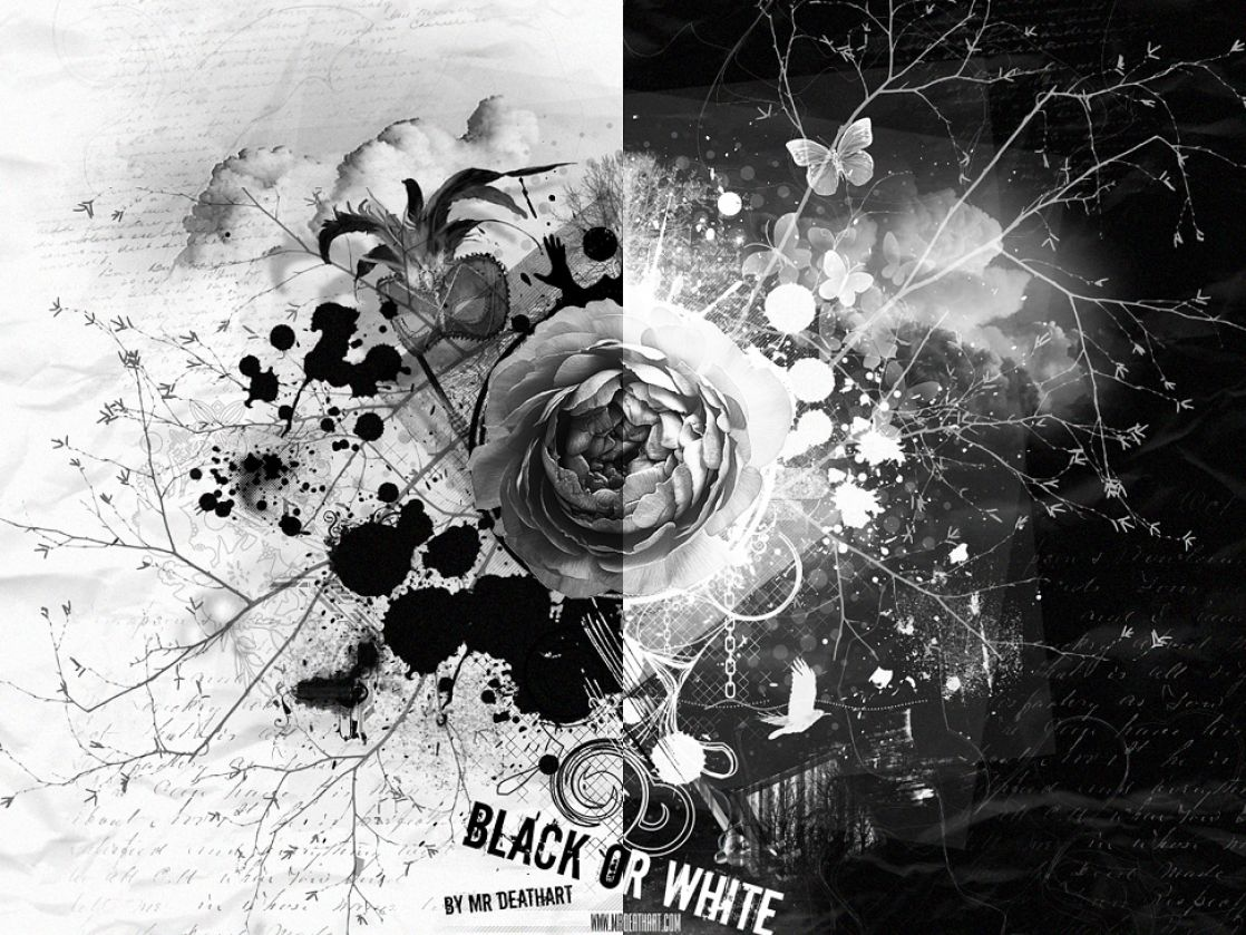 Black and white wallpaper. Black and white creative wallcoveringinc. Wallcovering, Murals, Wall Borders, Home Accessories, Art and Wall Decorations