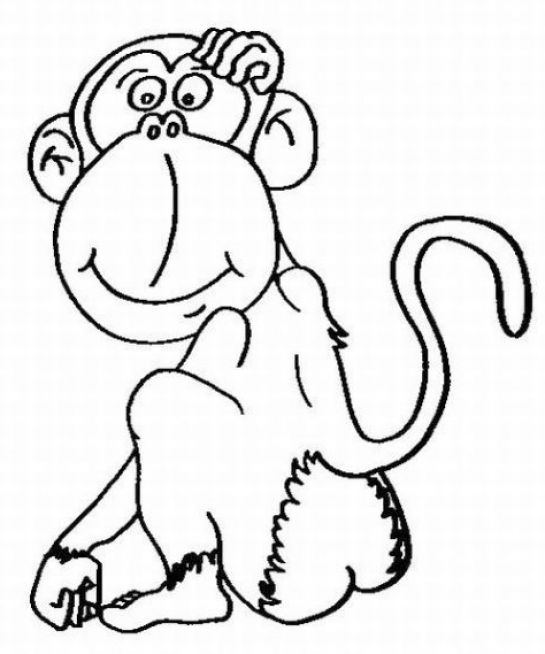 Cute Baby Monkeys Colouring Pages