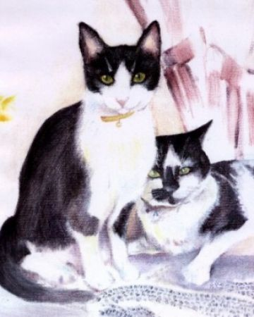 Portrait of two cute domestic black and white cats together.