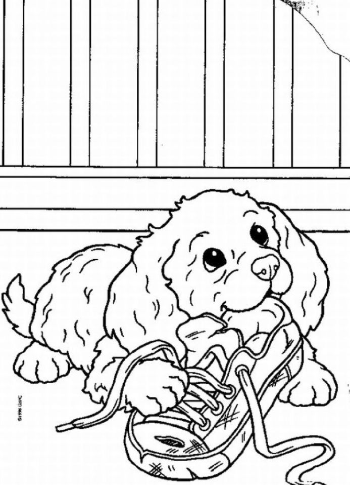 Dog and puppy coloring book pages, sheets and pictures !Christmas