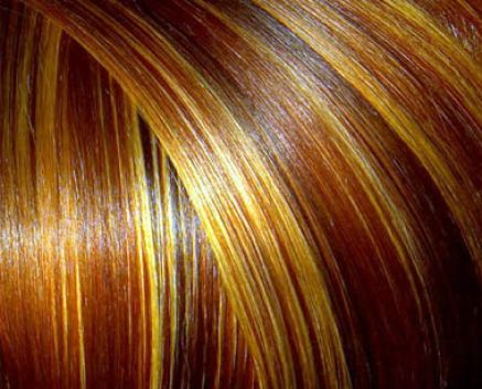 Dark red brown hair with blonde highlights pictures 4