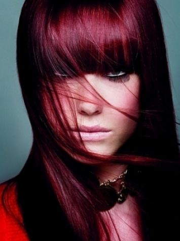 Hairy On Pinterest Burgundy Highlights Black Cherry