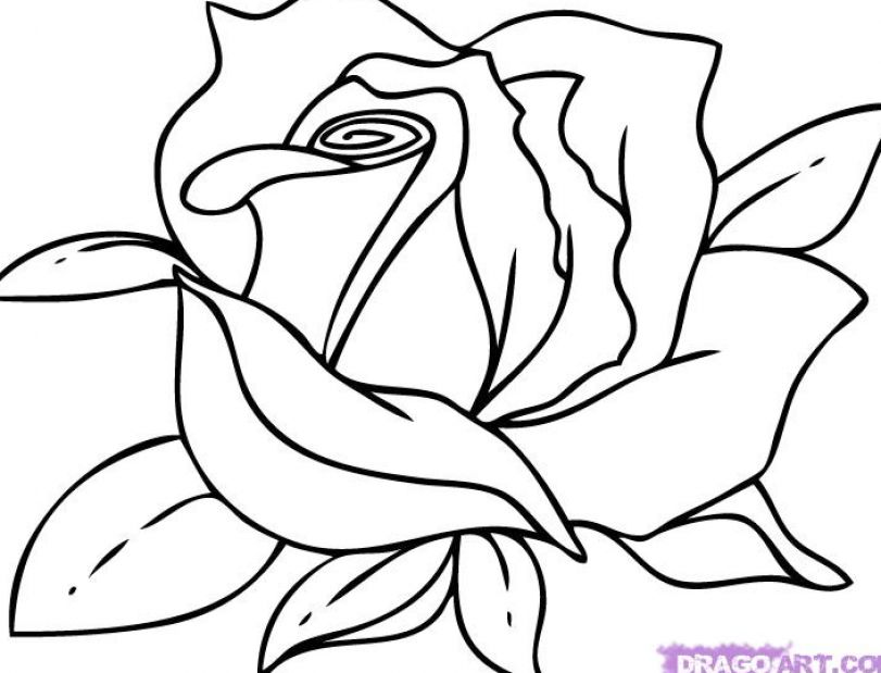 Easy cartoon pictures to draw pictures 4