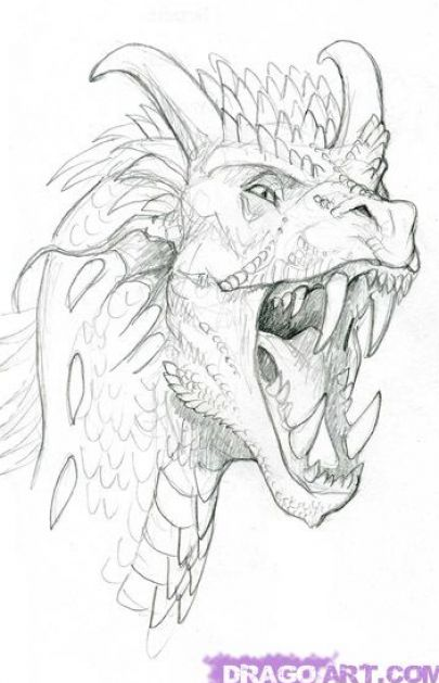 Draw a dragon's head step by step. How to draw a dragon step by step - draw
