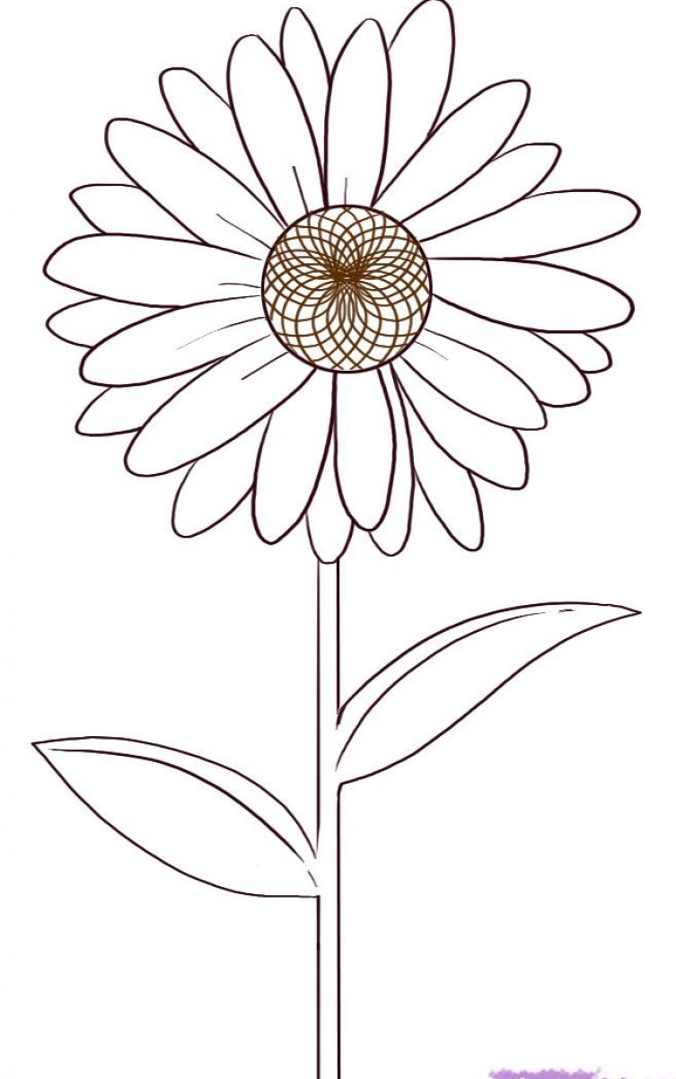 How to draw a flower step by step for kids for How to draw a pretty flower easy