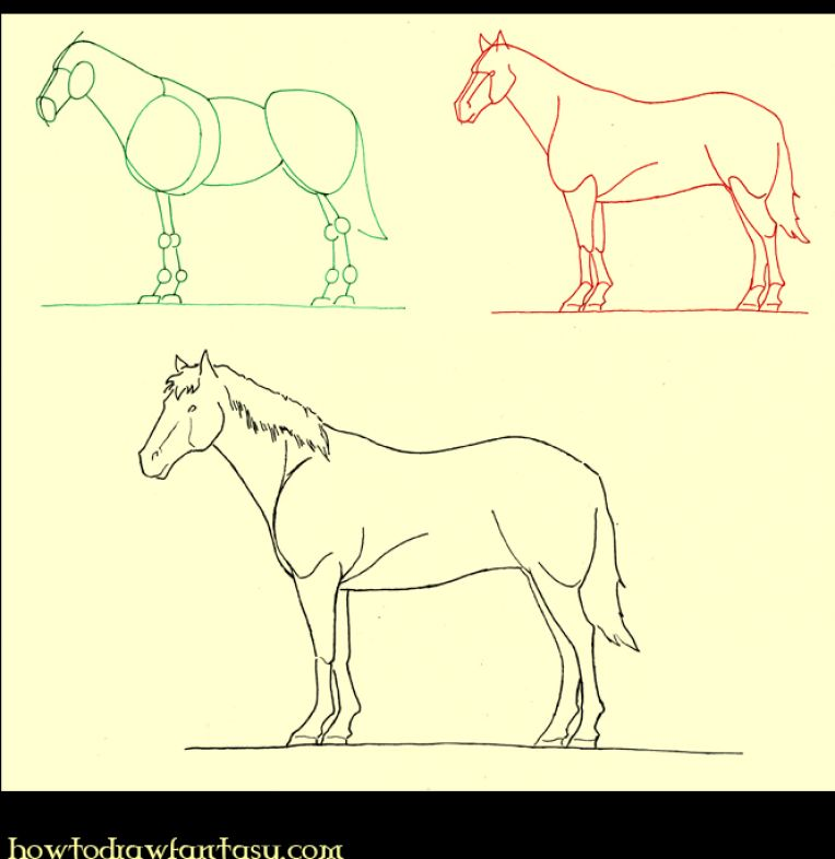 Horse Drawing For Beginners