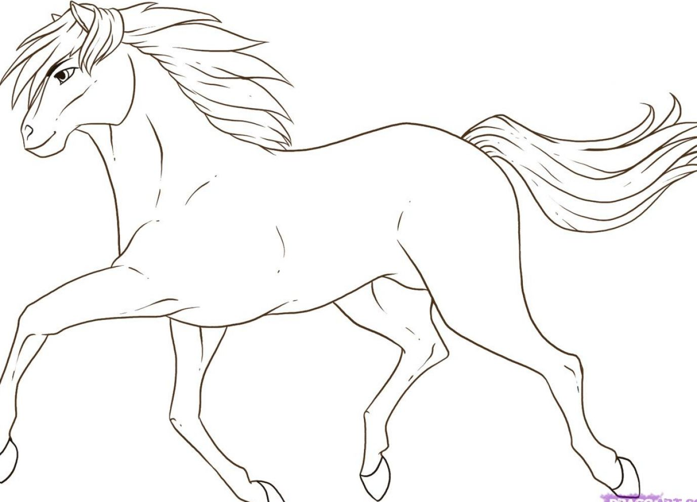 how-to-draw-a-horse-st...