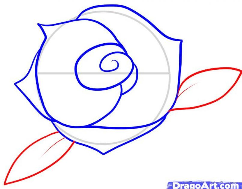 easy rose drawing for kids - photo #20