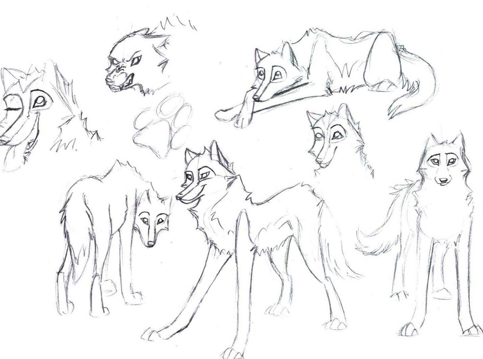 how to draw a wolf lying down 1