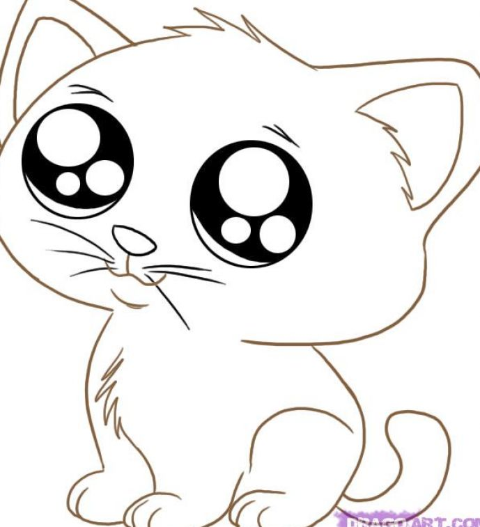 How to draw cute anime cats pictures 3