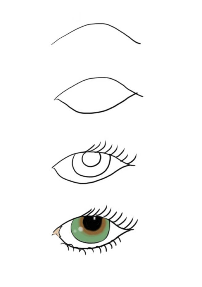 how to draw eyes and eyebrows
