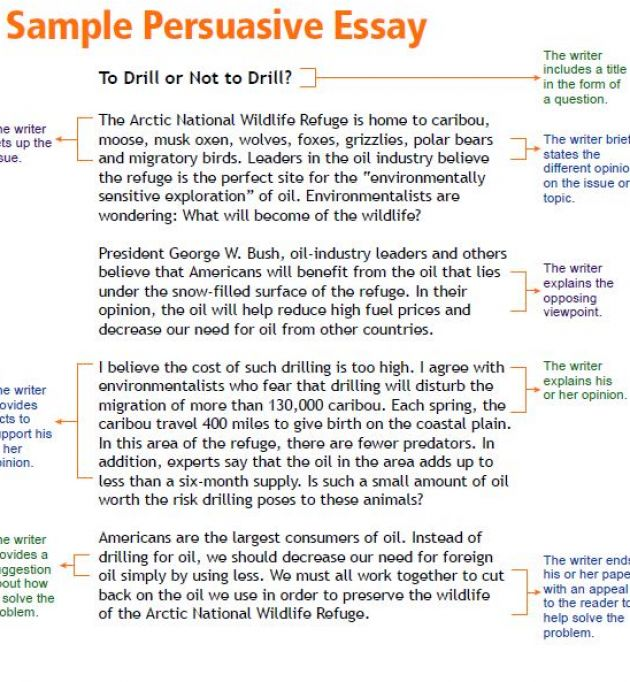 How to write persuasive essay