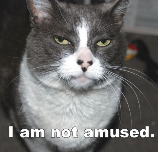 The gallery for --> Not Amused Rage Face