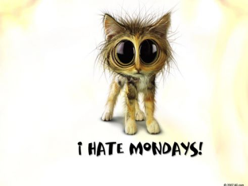 hate wallpaper. hate mondays wallpapers to