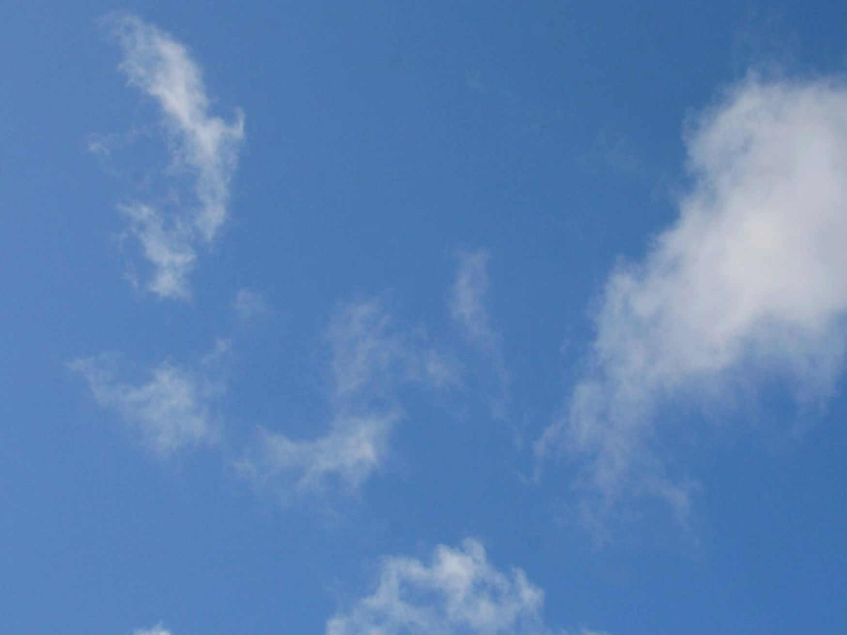 Free Images : atmosphere, blue sky, cloud, clouds ...  |Light Blue Sky Clouds