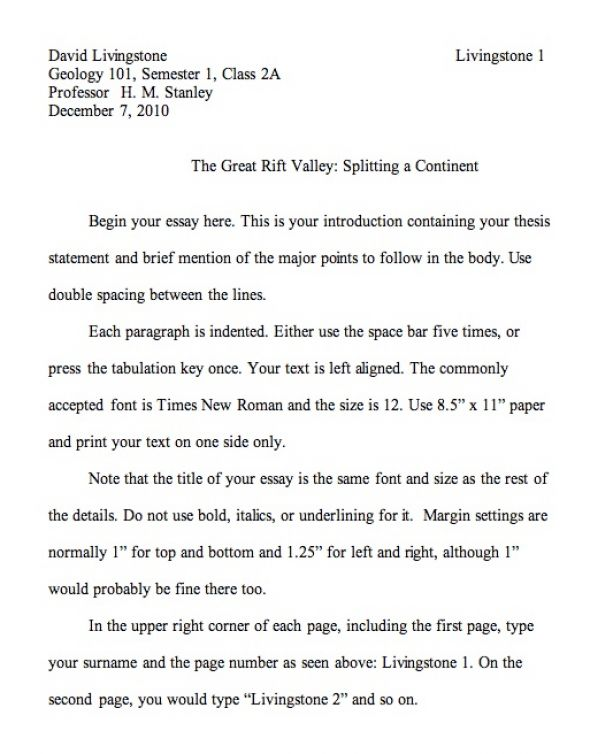 Example of an mla paper