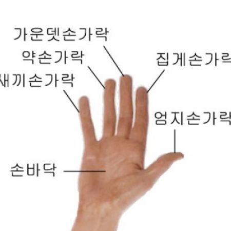 Name of fingers in hindi pictures 1