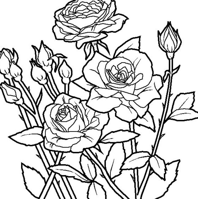 printable coloring pages of flowers. Flowers coloring pages