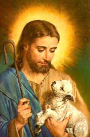 picture of jesus with lamb 1