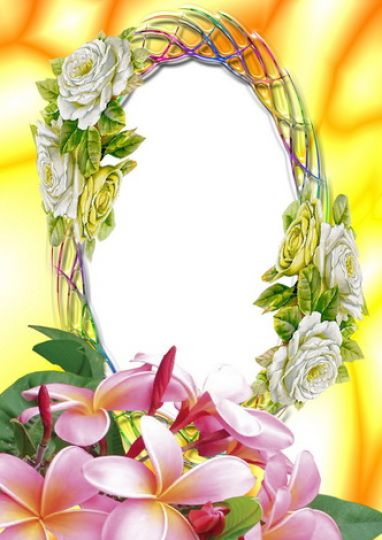 Pictures of flowers in a frame pictures 3