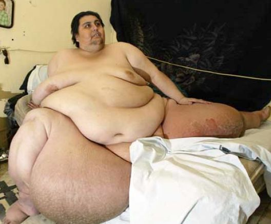 Relly Fat People 108