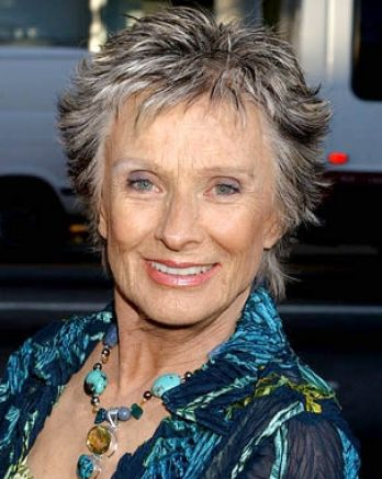 Short layered haircuts for women over 50 pictures 1