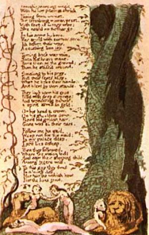 the conjunction between the tyger and the lamb by william blake Free essay: william blake was a first generation romantic poet  and creation,  with the tyger examining the intrinsic relationship between good and evil.