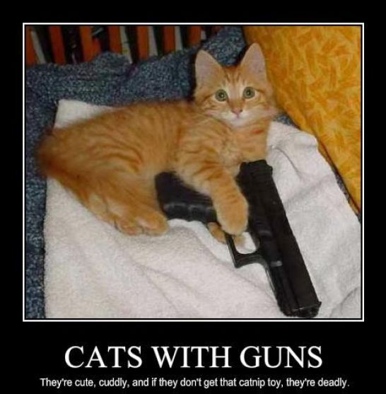Funny Cats With Guns | Auto Design Tech