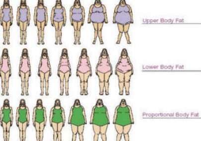 What is my body shape using measurements