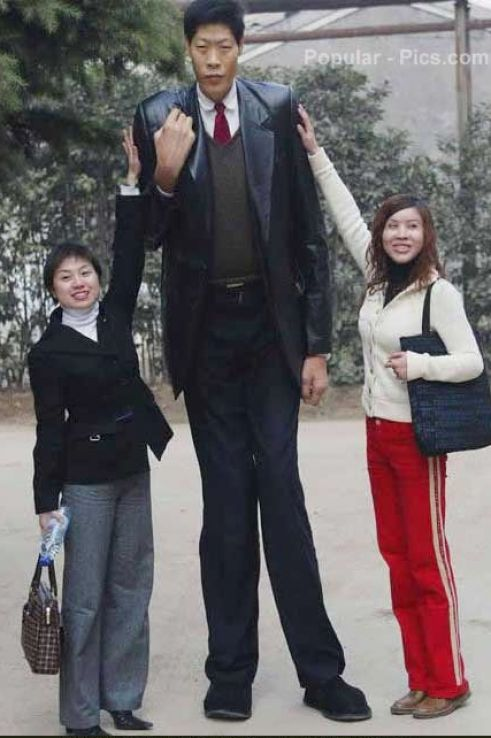 tallest woman in world. tallest woman in world. the